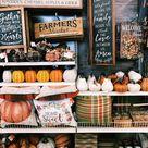 50 x leuke dingen om te doen in de herfst - Suzanne Elisa