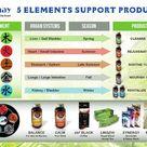 Alphay Distributor Replicated Site – Alphay International Inc.