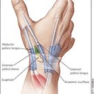 Evaluation and Diagnosis of Wrist Pain: A Case-Based Approach