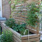 Meine Garten Bepflanzung   Villa Josefina
