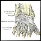 Exercises for Sore Wrists & Hands