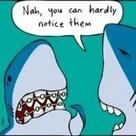 Braces Humor