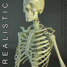 Realistic Skeleton by VisualCG on @creativemarket
