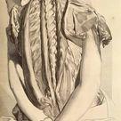 Dream Anatomy: Gallery: Govard Bidloo and Gérard de Lairesse: Ontleding des menschelyken lichaams...
