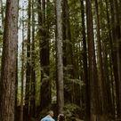 California Redwoods Photoshoot