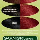 Garnier Nutrisse Ultra Color Nourishing Hair Color Creme, R3 Light Intense Auburn (Packaging May Vary), Pack of 1  Health Beauty Personal Care Care