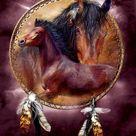 Native American Horses