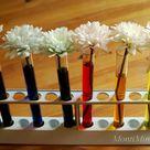 Regenbogenblumen - Experimentieren mit Farben - Montessori Blog & Shop - MontiMinis