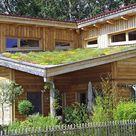 Lörrach: Wachstum auf dem Dach