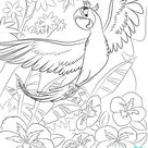 Free Rio 2 Coloring Pages - Mommy's Busy, Go Ask Daddy