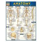 Anatomy, Laminated Guide