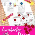 Lernkarten Blut