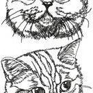British Shorthair Cat Set