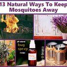 Keeping Mosquitos Away