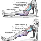 Core Muscle Exercises