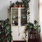Most recent Totally Free kitchen design vintage Suggestions