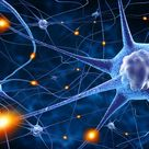 Trauma - Was im Gehirn dabei passiert