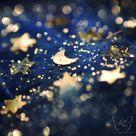 .star. by kyokosphotos on DeviantArt