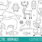 Arctic Animals Clipart   Digital Stamps   Vector   Polar Bear   Penguin   Seal   Walrus   Hare   Fox   Narwhal   Reindeer   Snowy Owl