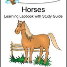 Free Horse Unit Study Resources -