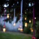 Evening Garden Parties