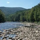 Mohawk Trail State Forest (Charlemont) - 2021 All You Need to Know BEFORE You Go (with Photos) - Tripadvisor