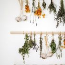 How to Dry Herbs In Your Kitchen