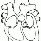 Printable Heart Pictures