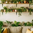 The Top 36 Indoor Garden Ideas   Interior Home and Design