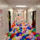 10 Most Epic Senior Pranks From The Class Of 2015