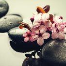 Fototapeta - Spa Flowers And Pebbles Vliesová tapeta  - 208x146 cm