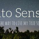 Feel me | Into Sense