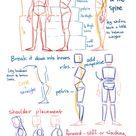 anatomy drawing tips