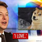 Elon Musk reveals why he loves Dogecoin after tweeting in support of meme cryptocurrency - Republic…