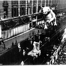 Ferdinand The Bulls