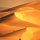 Algodones Dunes in the Imperial Sand Dunes Recreation Area, California ~ Photo by...Mark Newman©