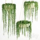 15+ Beautiful Hanging Plants Ideas   Indoor & Outdoor » Jessica Paster hangingplantsindoor