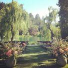 Swan Lake Wedding