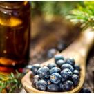 15 Essential Oils For Swollen Lymph Nodes Behind Ear, In Armpit, Neck, Throat, and Groin - Health Guide Net
