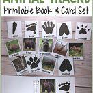 Animal Tracks Printable Book & Matching Cards for Preschool, Pre-K Kids