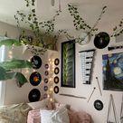 Decorative Vines Set