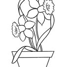 Flowers in Pot Flower Coloring Pages