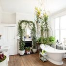 16 Trending Bathroom Plant Ideas You Should Try