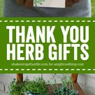 Thank You Herb Gifts | A Night Owl Blog