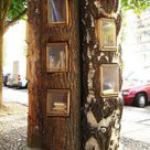 Book lovers make mini public libraries out of trees