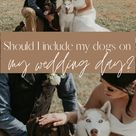 Should I Include my Dogs in My Wedding?