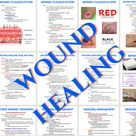 Nursing Notes Bundle for Integumentary System/Disorders, Wounds, Burns, & Pressure Ulcers