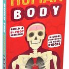 Build the Human Body