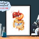 Medical Art Digestive System Anatomy Watercolor Print Clinic Decor Liver Intestines Pancreas Gastrointestinal System Doctor Gift