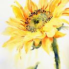 Sonnenfänger Poster von Ruth S Harris